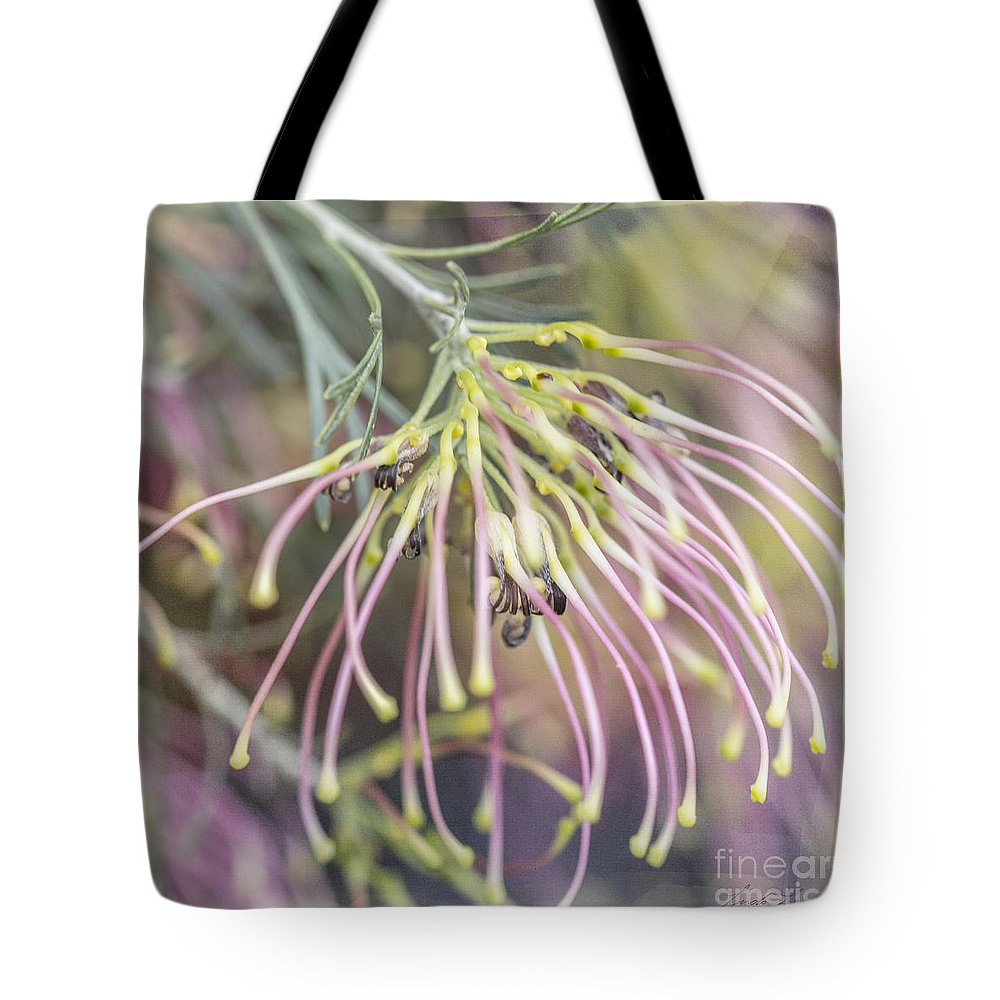 Grevillea Tote Bag featuring the photograph Winparra Gem by Linda Lees