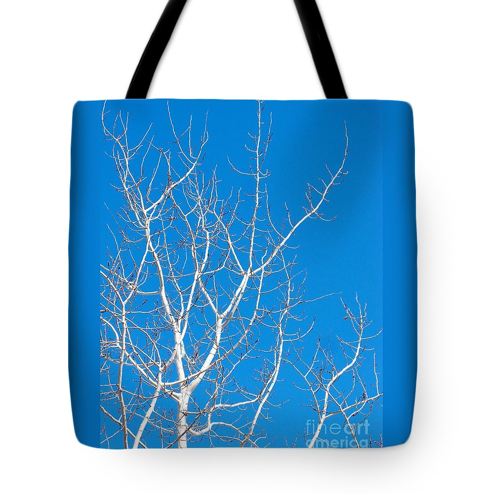 Winter Tote Bag featuring the photograph Winter by Ann Horn