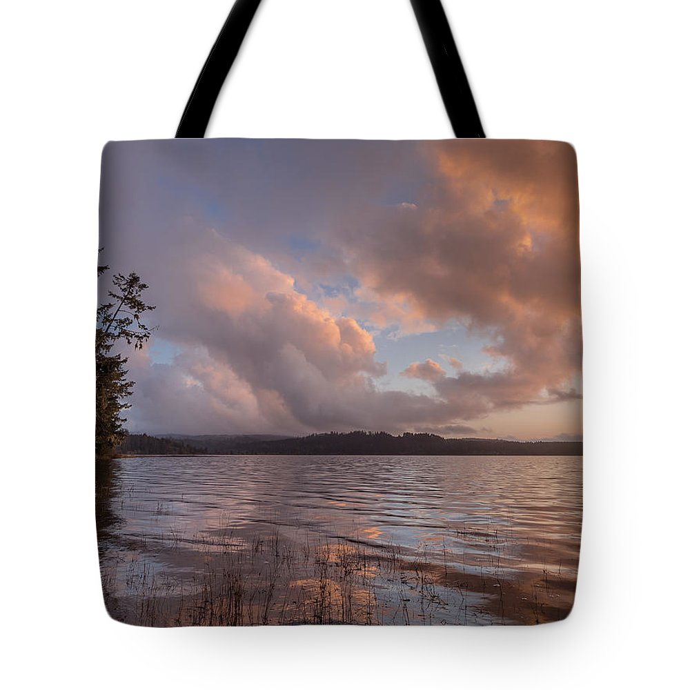Big Lagoon Tote Bag featuring the photograph Winter At Big Lagoon by Greg Nyquist