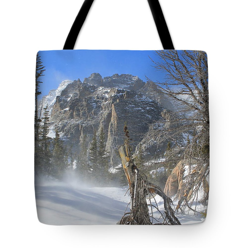 Winter Tote Bag featuring the photograph Winter At Loch Vale 2 by Tonya Hance