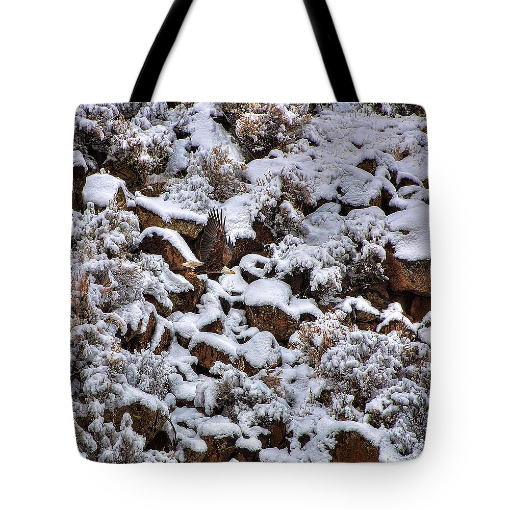 Eagle Tote Bag featuring the photograph Winter Bald Eagle by Britt Runyon