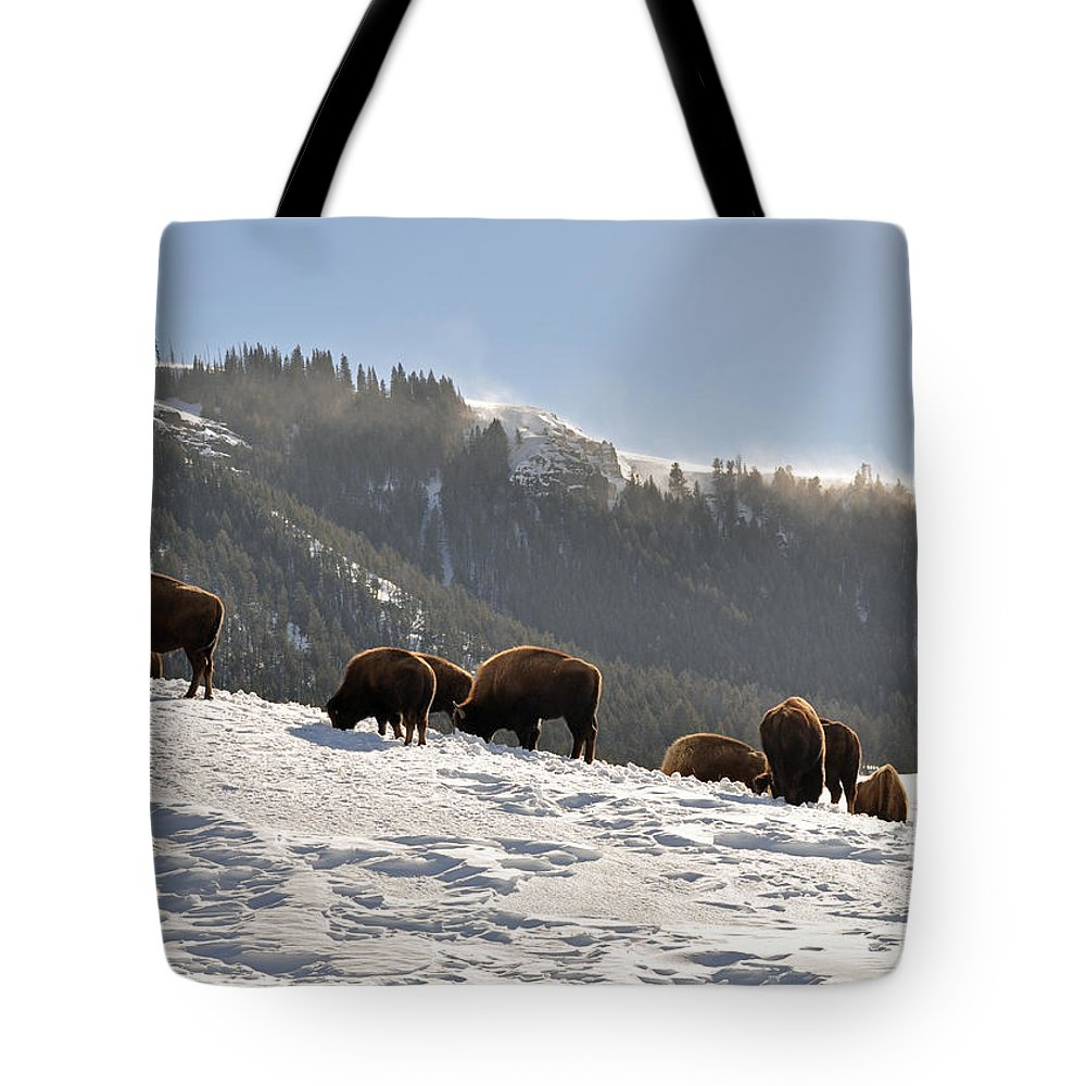 Bison Tote Bag featuring the photograph Winter Bison Herd In Yellowstone by Bruce Gourley