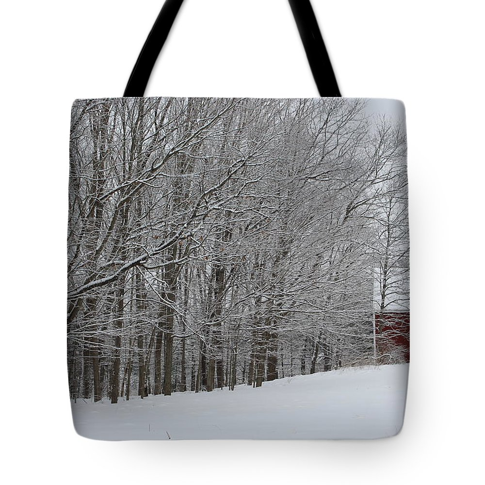 Landscape Trees Snow Red Barn Winter Tote Bag featuring the photograph Winter by Coralynn Gutierrez