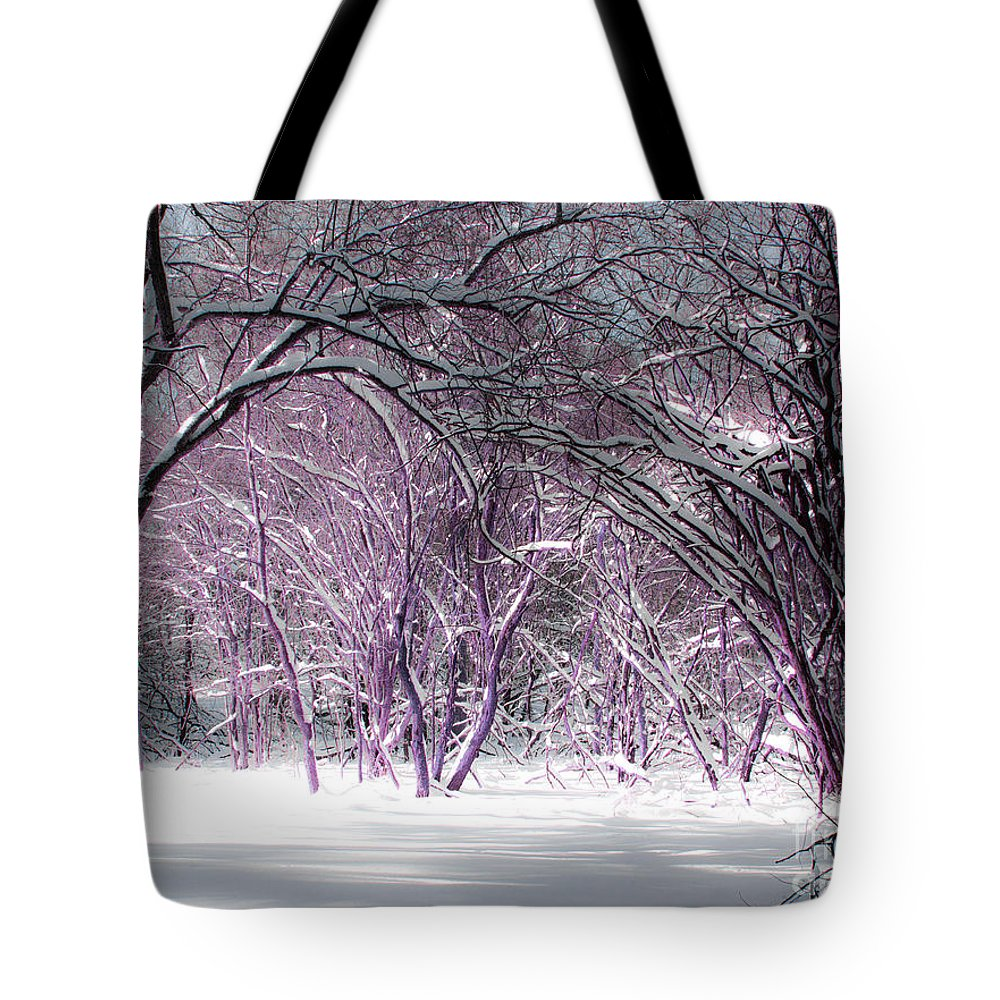 Winter Tote Bag featuring the photograph Winter Faeries by Barbara McMahon