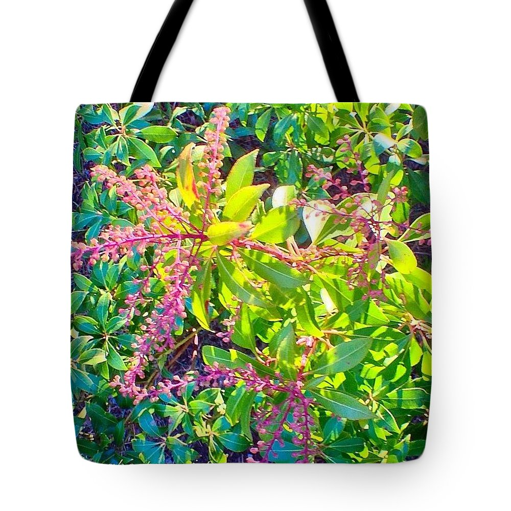 Winter Glow Tote Bag featuring the photograph Winter Glow by Anna Porter
