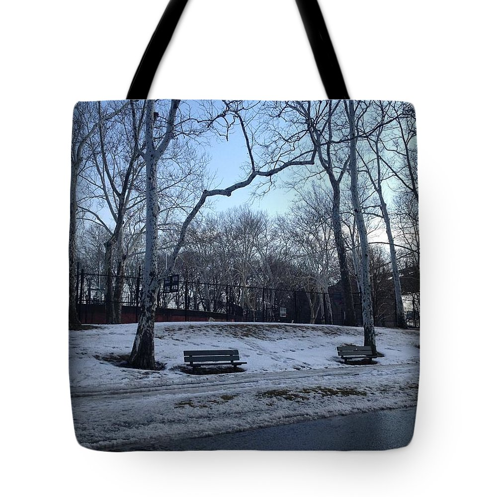 Landscape Tote Bag featuring the photograph Winter In The Park by Luanne Rozran