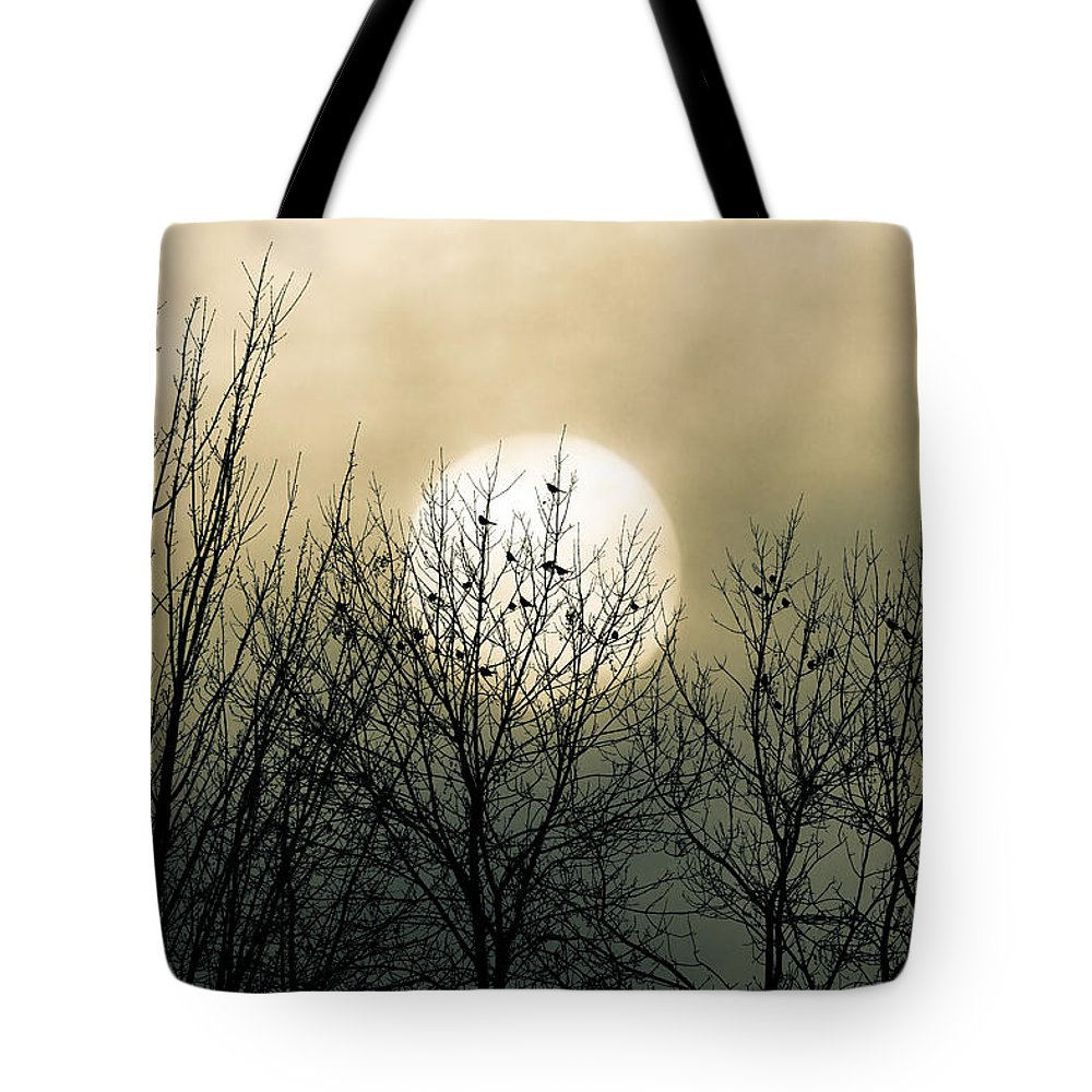 Winter Tote Bag featuring the photograph Winter Into Spring by Bob Orsillo