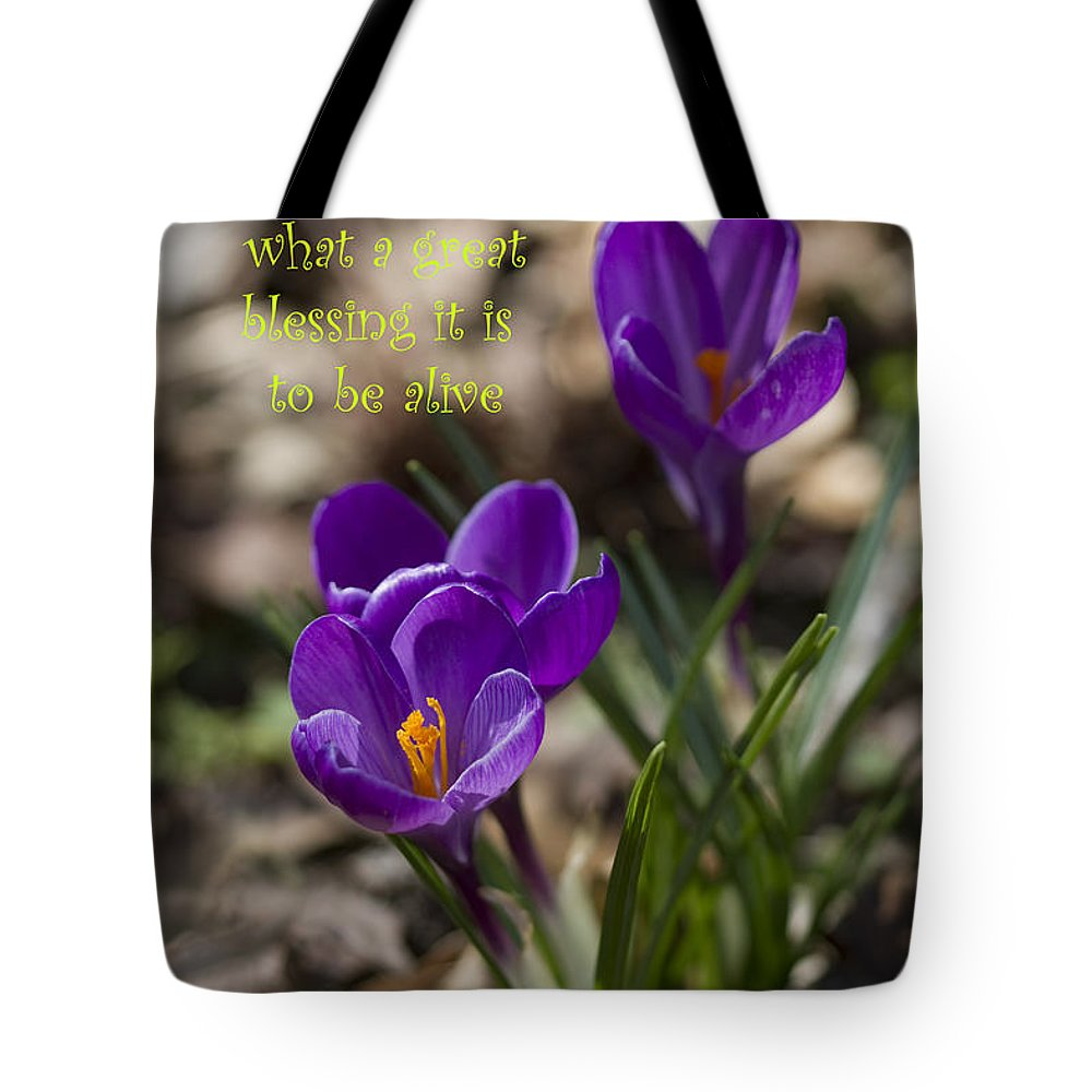 Crocus Tote Bag featuring the photograph Winter Is Over - Spring Has Arrived by Kathy Clark