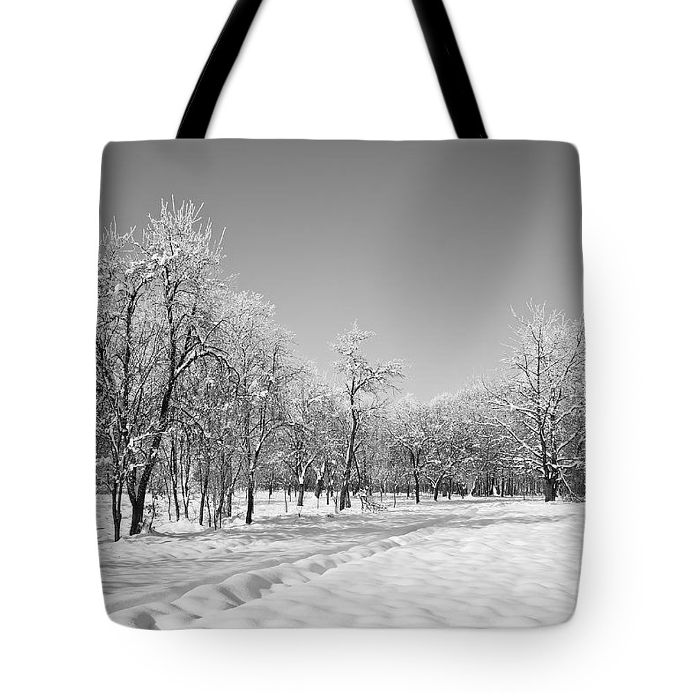 Beautiful Tote Bag featuring the photograph Winter Landscape In Bw by Dan Radi
