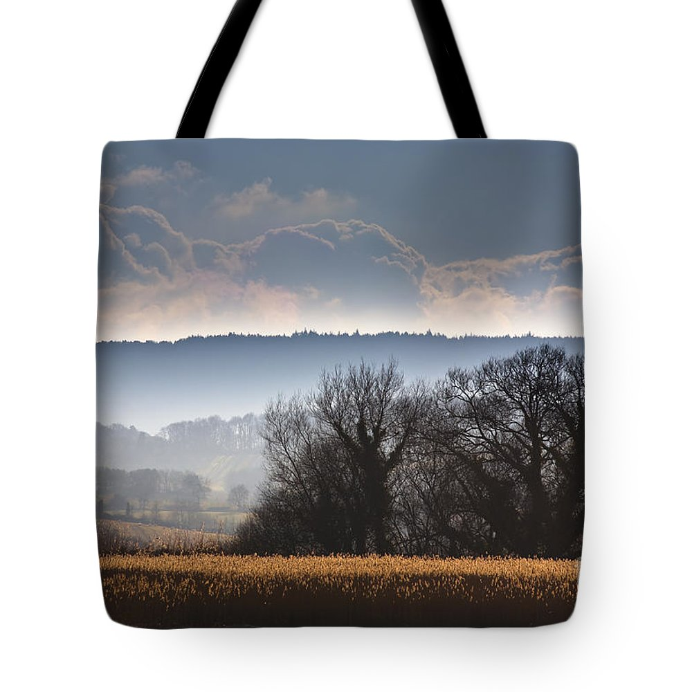 Winter Tote Bag featuring the photograph Winter Morning by Jan Bickerton