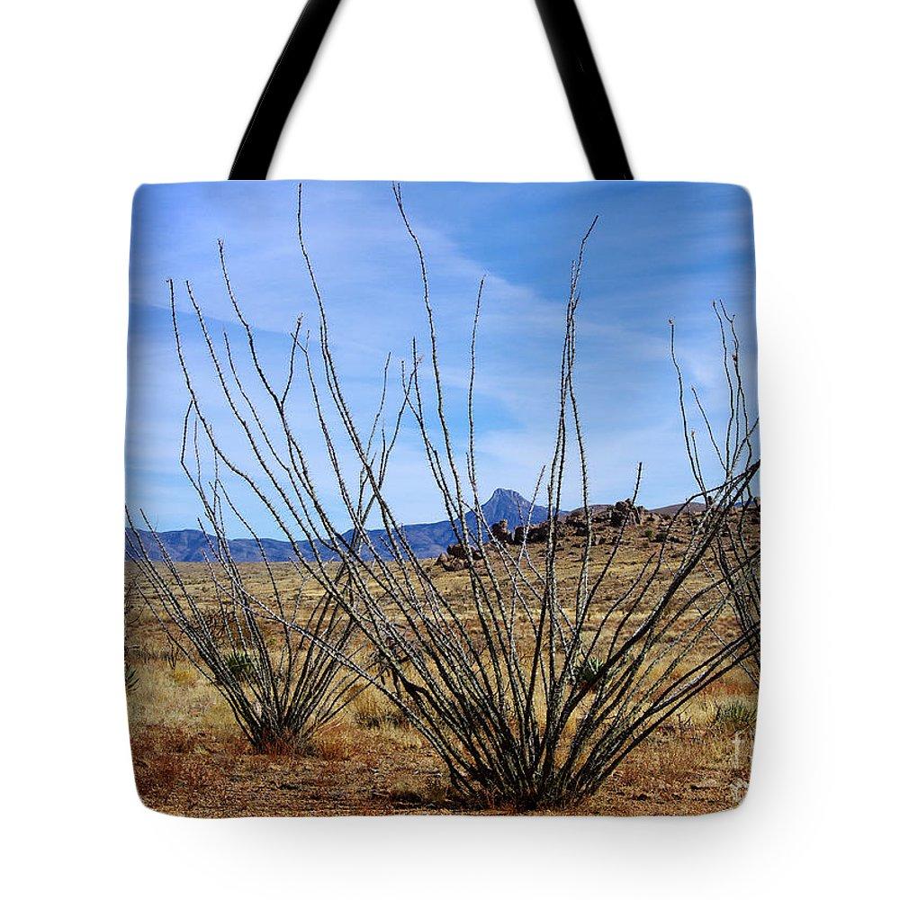 Photography Tote Bag featuring the photograph Winter Ocotillo Garden by Vicki Pelham