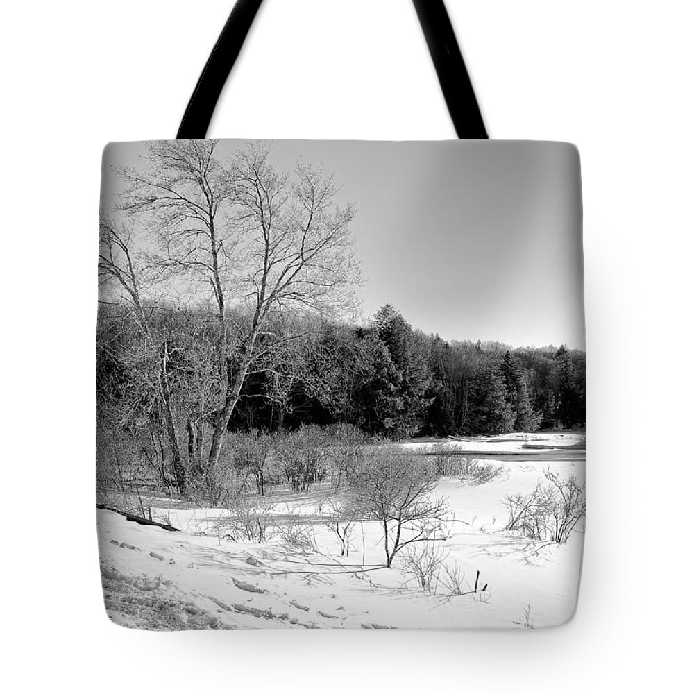 Adirondack's Tote Bag featuring the photograph Winter On The Moose River by David Patterson