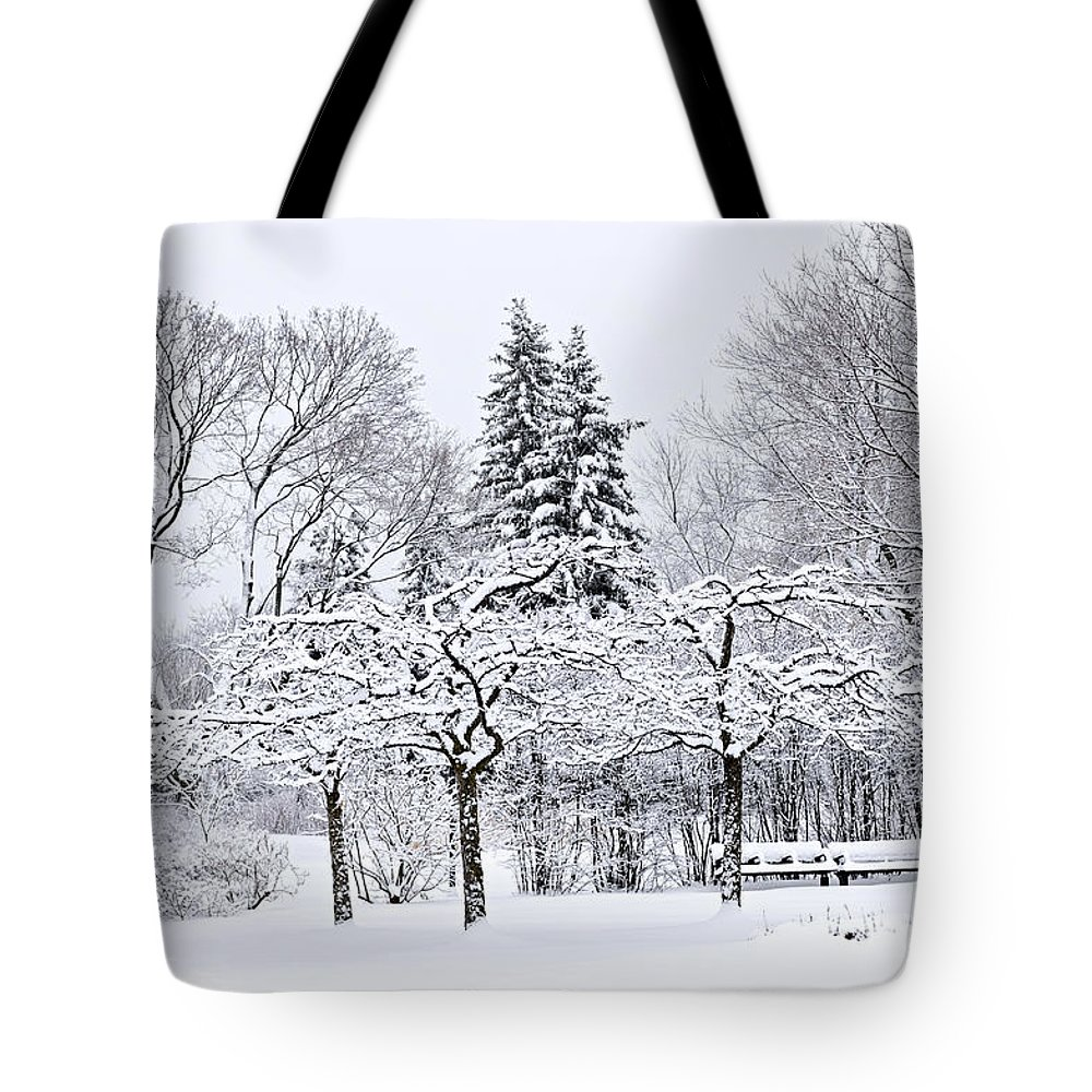 Winter Tote Bag featuring the photograph Winter Park Landscape by Elena Elisseeva