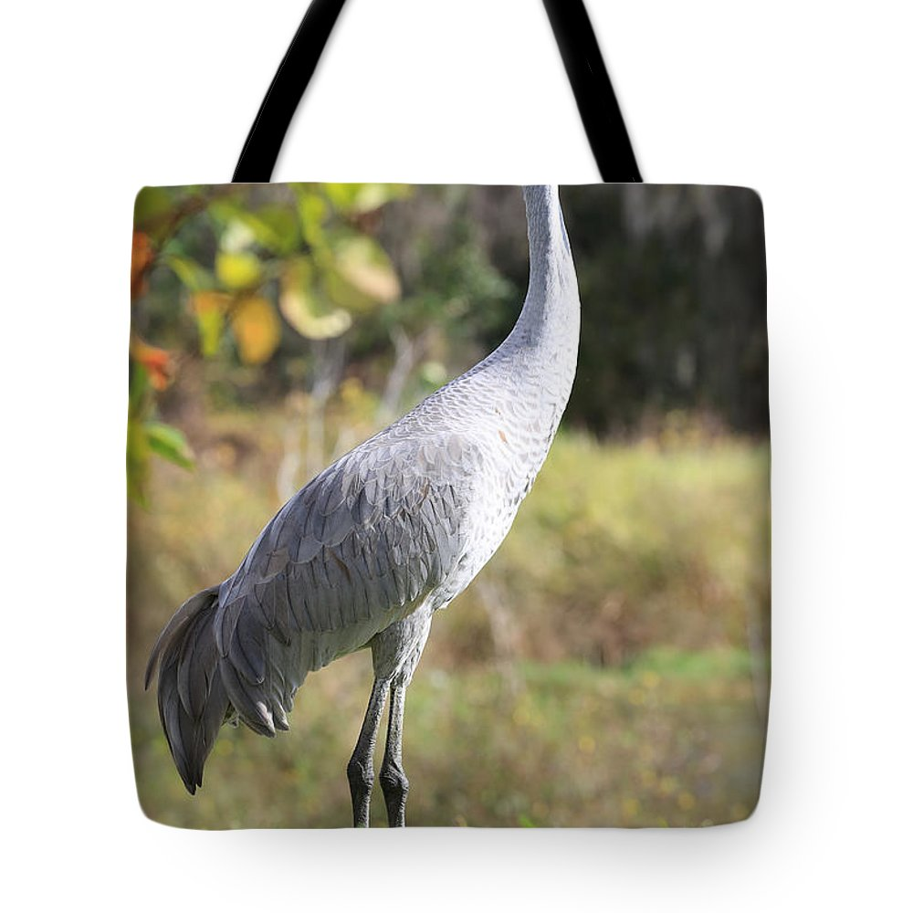 Sandhill Tote Bag featuring the photograph Winter Sandhill Crane by Carol Groenen