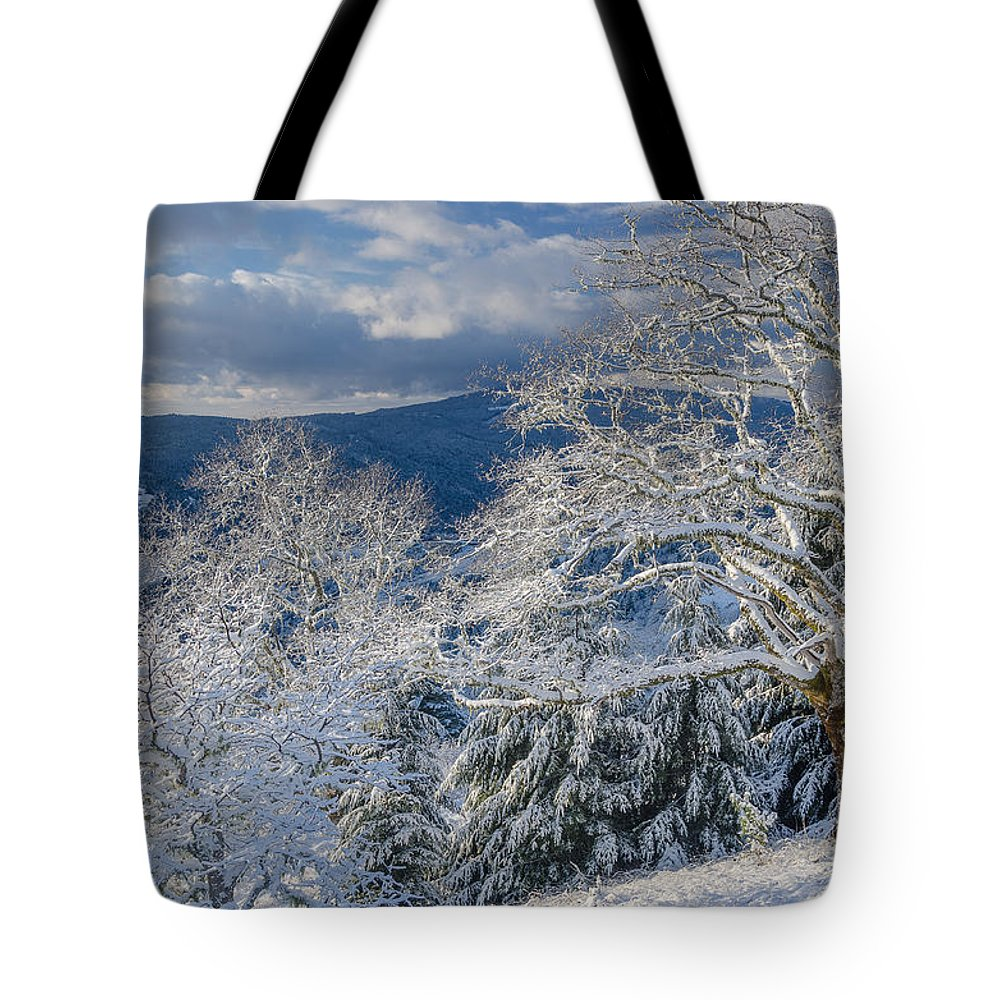 Dramatic Sky Tote Bag featuring the photograph Winter Scene At Berry Summit by Greg Nyquist