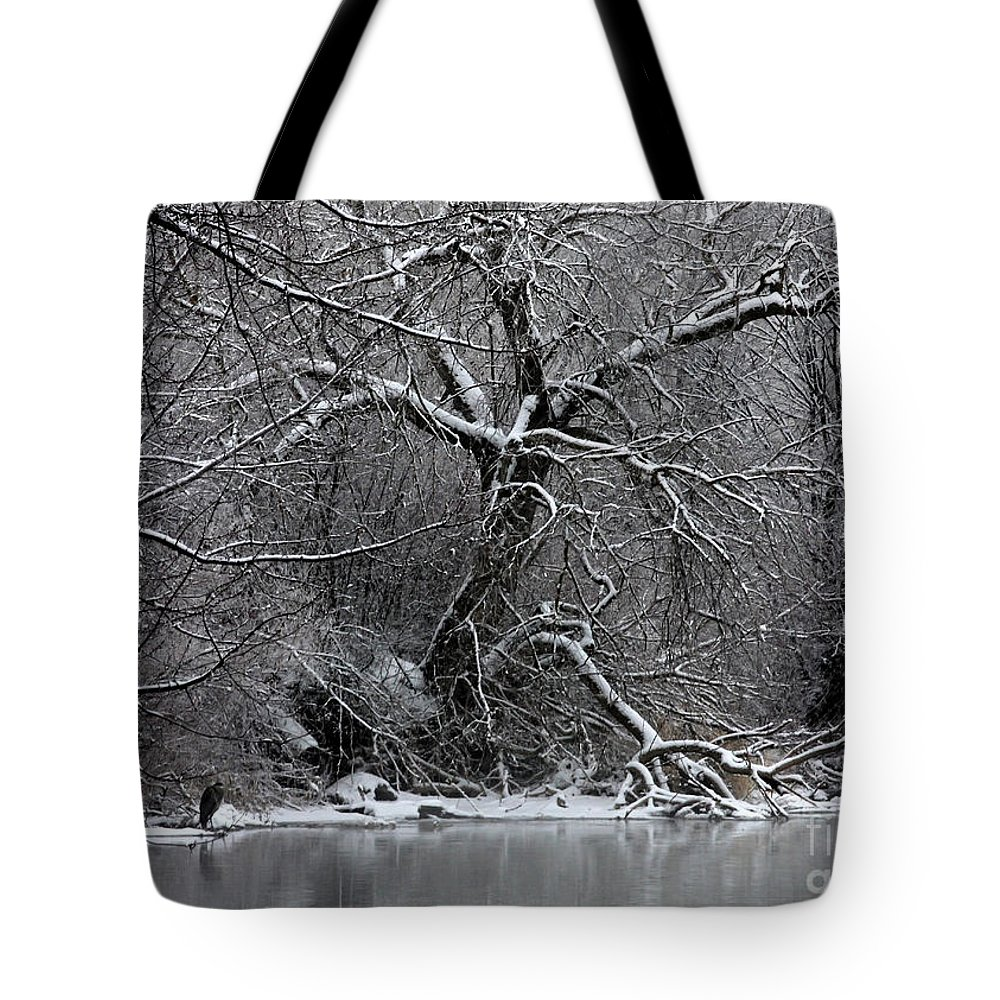 Winter Tote Bag featuring the photograph Winter Solitude by Carol Groenen