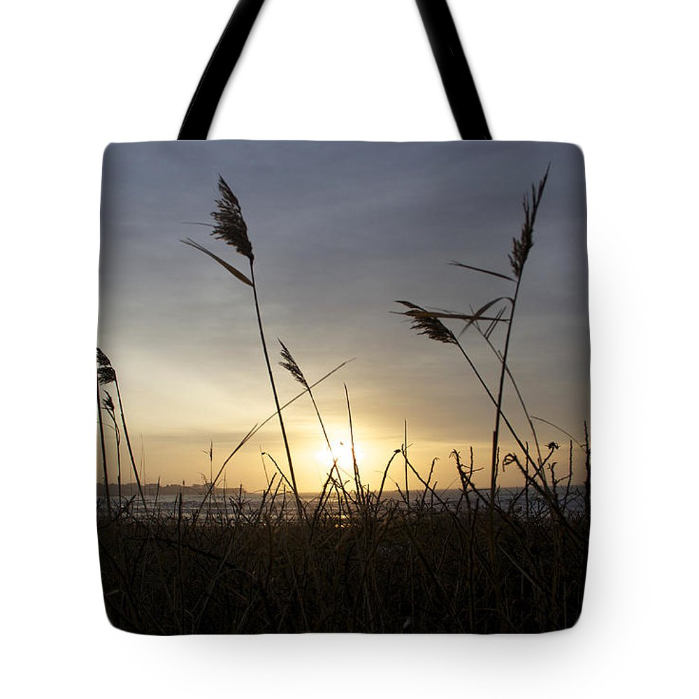 Beach Tote Bag featuring the photograph Winter Sunrise In Newport Ri by Michael Mooney