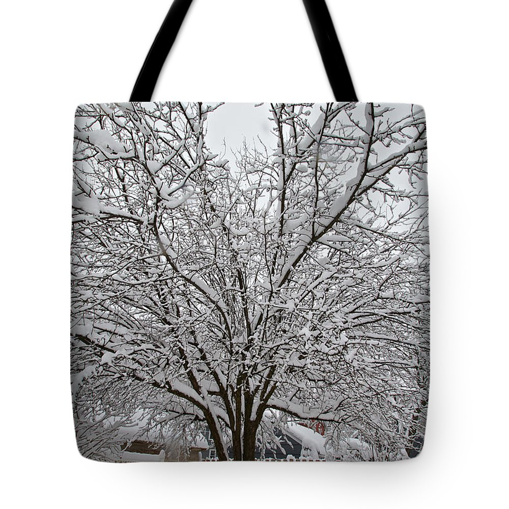 Snow Tote Bag featuring the photograph Winter Tree 7 by William Norton