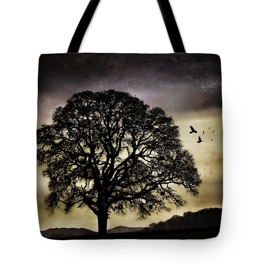 Oak Tote Bag featuring the photograph Winter Tree And Ravens by Carol Leigh