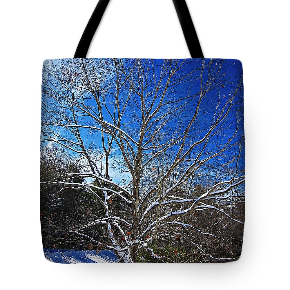 Snow Tote Bag featuring the photograph Winter Tree On Sky by MTBobbins Photography