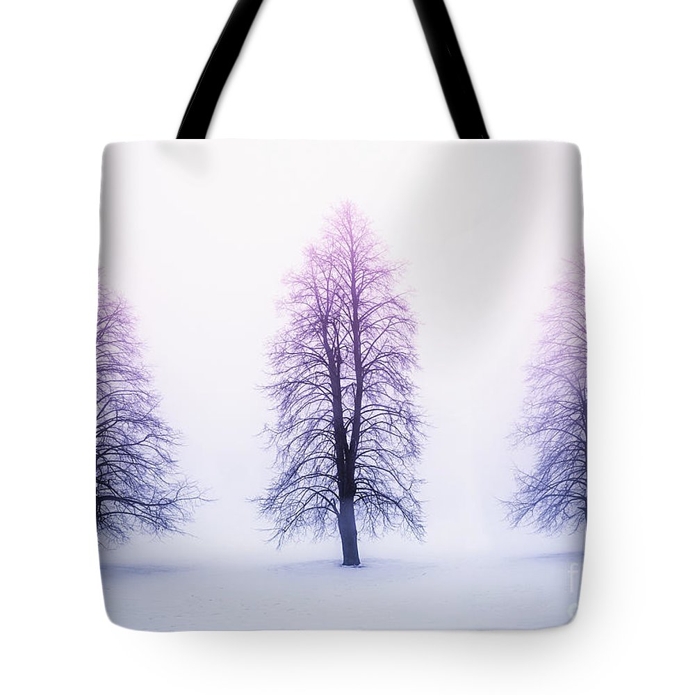 Trees Tote Bag featuring the photograph Winter trees in fog at sunrise by Elena Elisseeva