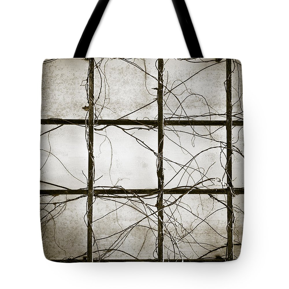Winter Tote Bag featuring the photograph Winter Trellis by Edward Fielding