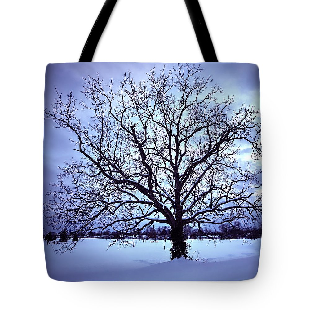 Tree Tote Bag featuring the photograph Winter Twilight Tree by Jaki Miller