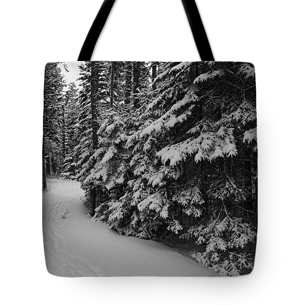 Maine Tote Bag featuring the photograph Winter Walk by David Rucker