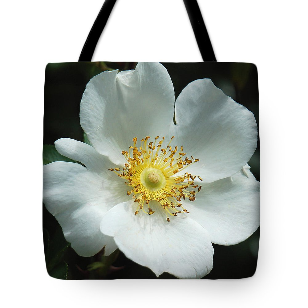 Floral Tote Bag featuring the photograph Winter White by Suzanne Gaff