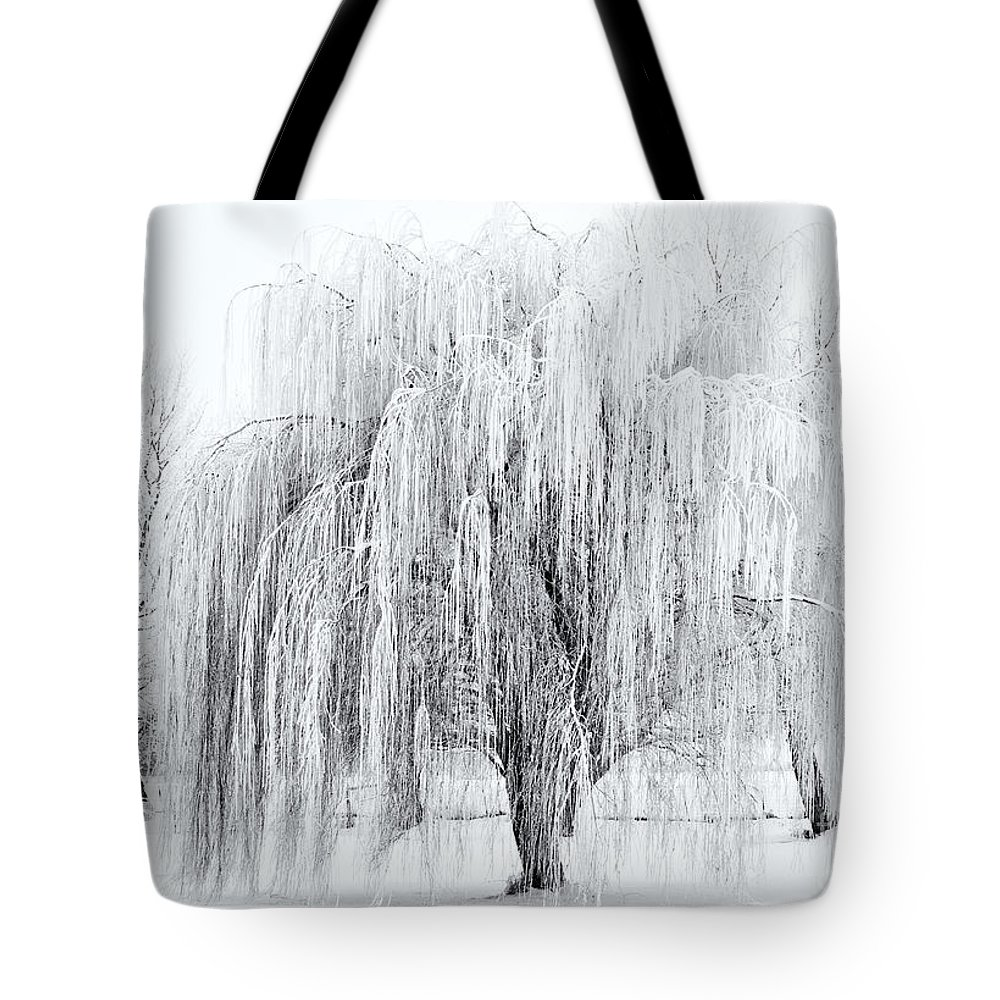Willow Tote Bag featuring the photograph Winter Willow by Mike Dawson
