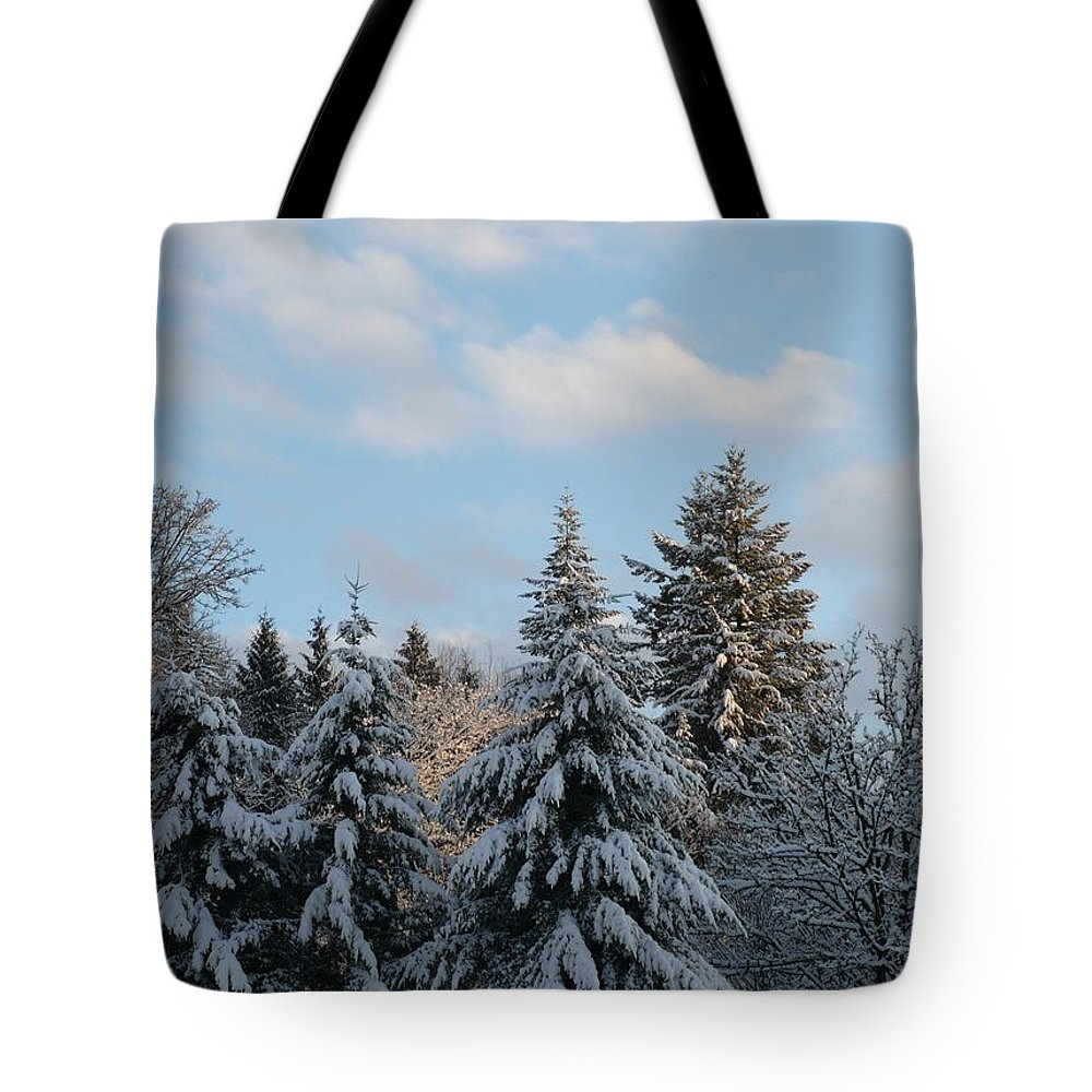 Winter Tote Bag featuring the photograph Winter Wonder by Nicki Bennett