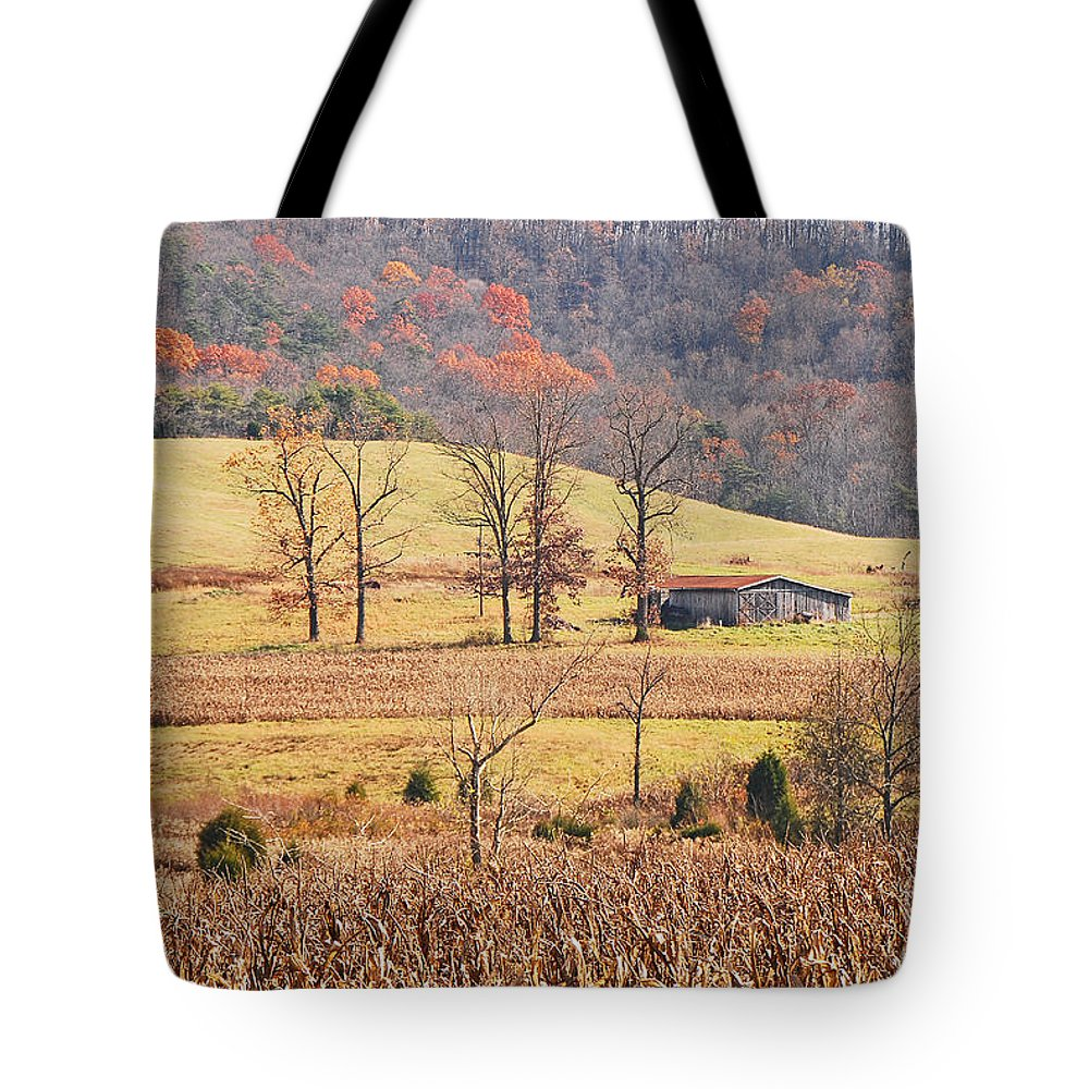 Barn Tote Bag featuring the photograph Winter's Coming by Mary Carol Story