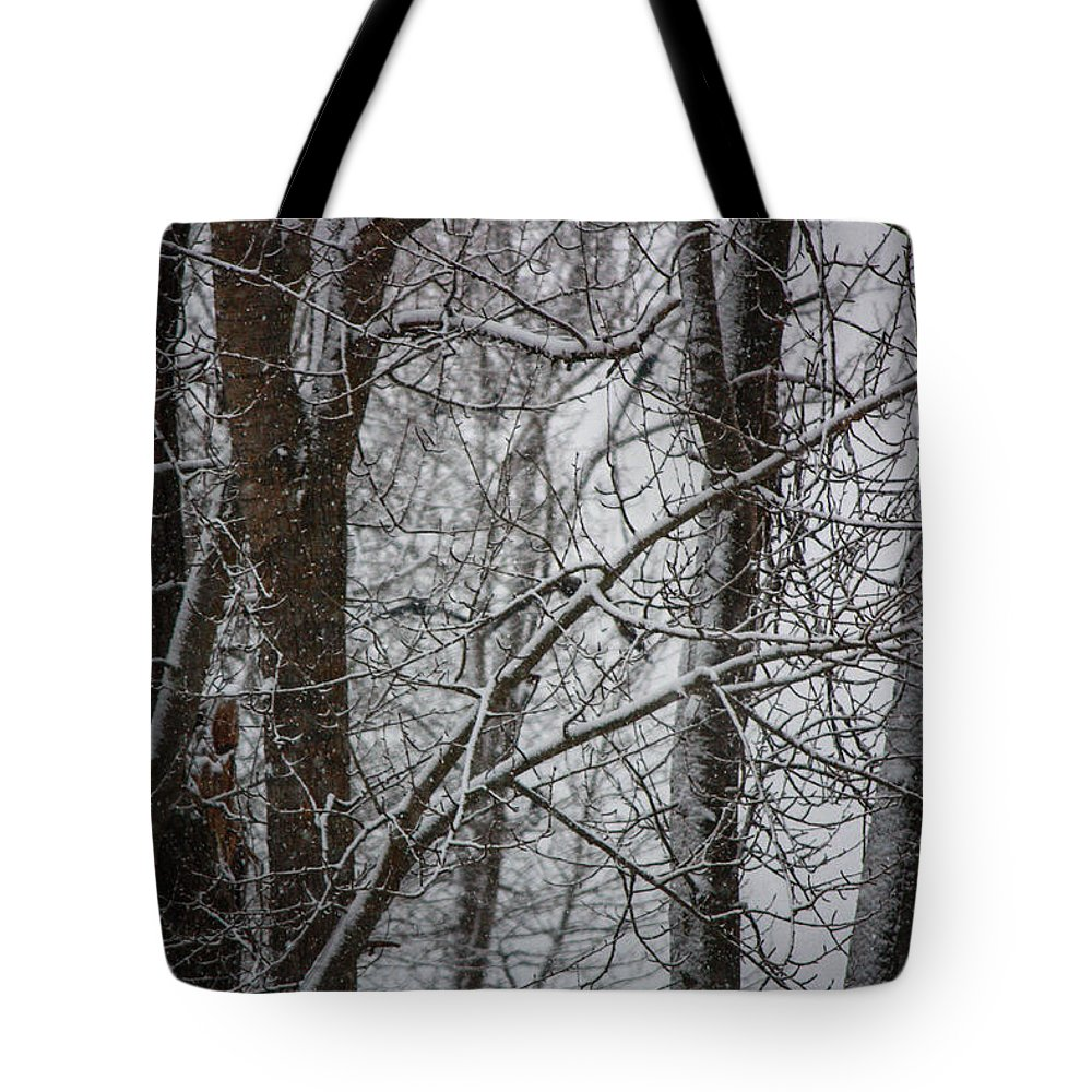 Winter Tote Bag featuring the photograph Wintery Day by Jacki Smoldon