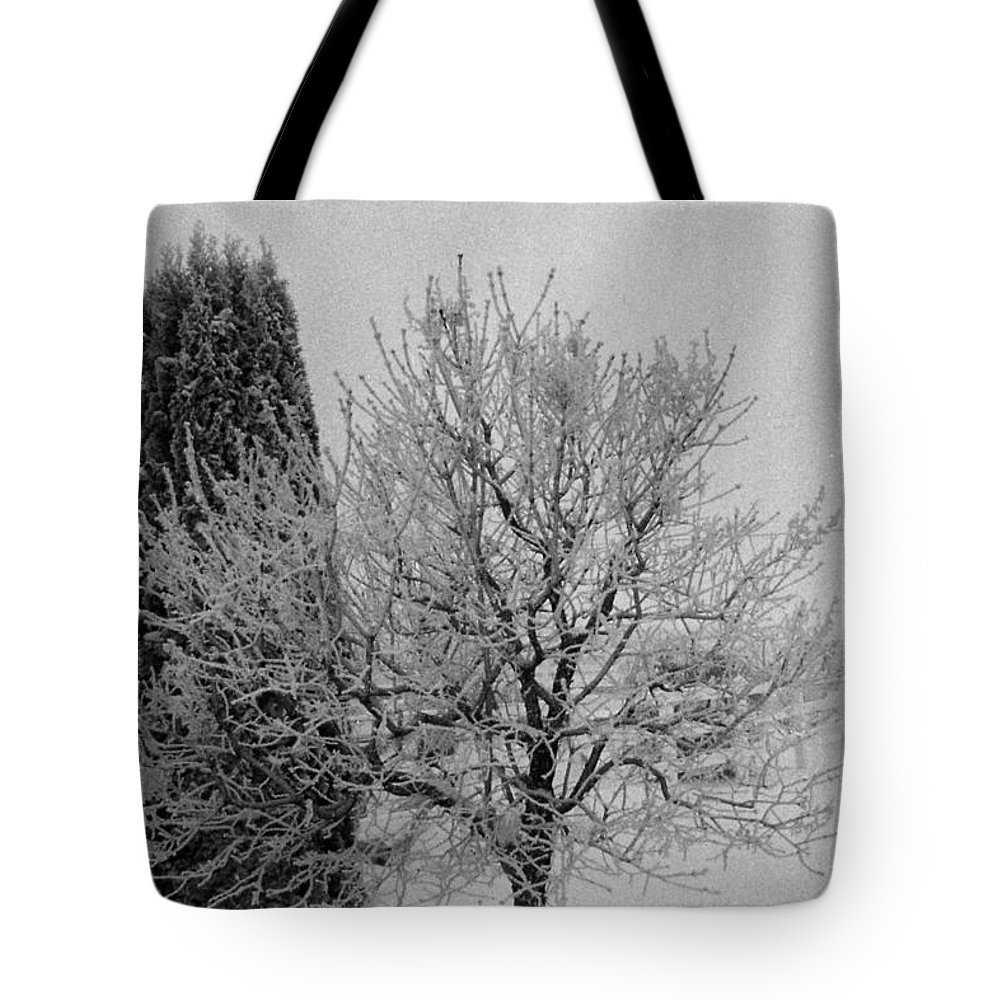 Winter Tote Bag featuring the photograph Wintery Tree by Mike Wheeler