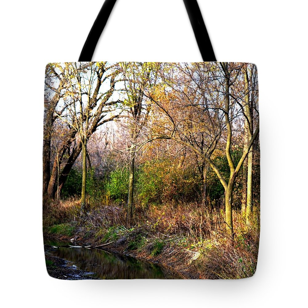 Woods Tote Bag featuring the photograph Wisconsin Scenic View by Karen Majkrzak