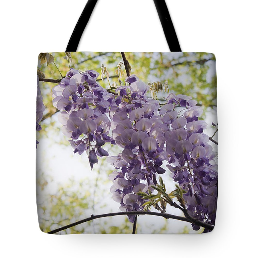 Wisteria Tote Bag featuring the photograph Wisteria Row by Teresa Mucha