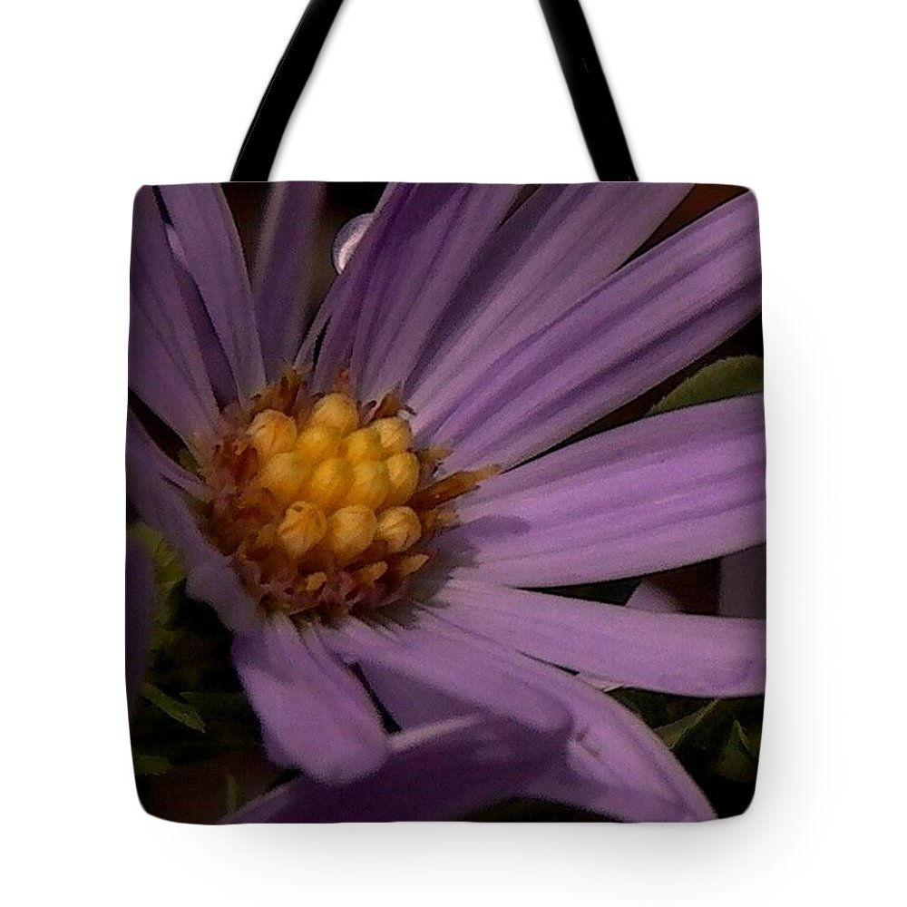 Flower Tote Bag featuring the photograph With Love - Patience by Theresa Asher