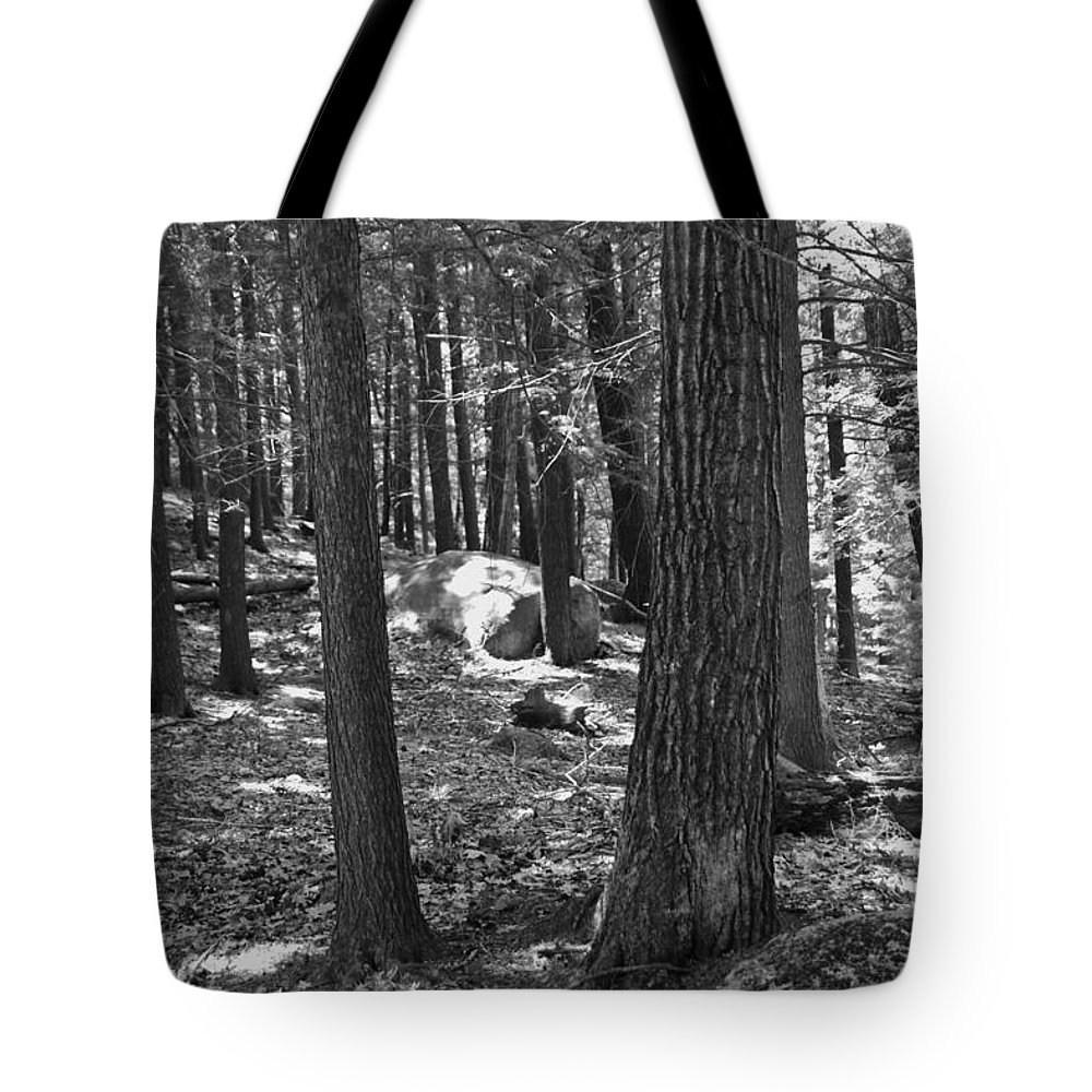 Forrest Tote Bag featuring the photograph Within by Sheryl Bergman