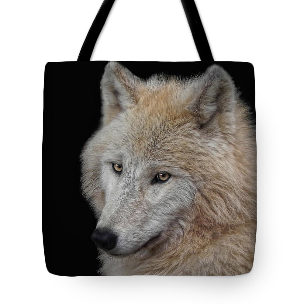 Animal Tote Bag featuring the photograph Wolf Bride by Joachim G Pinkawa