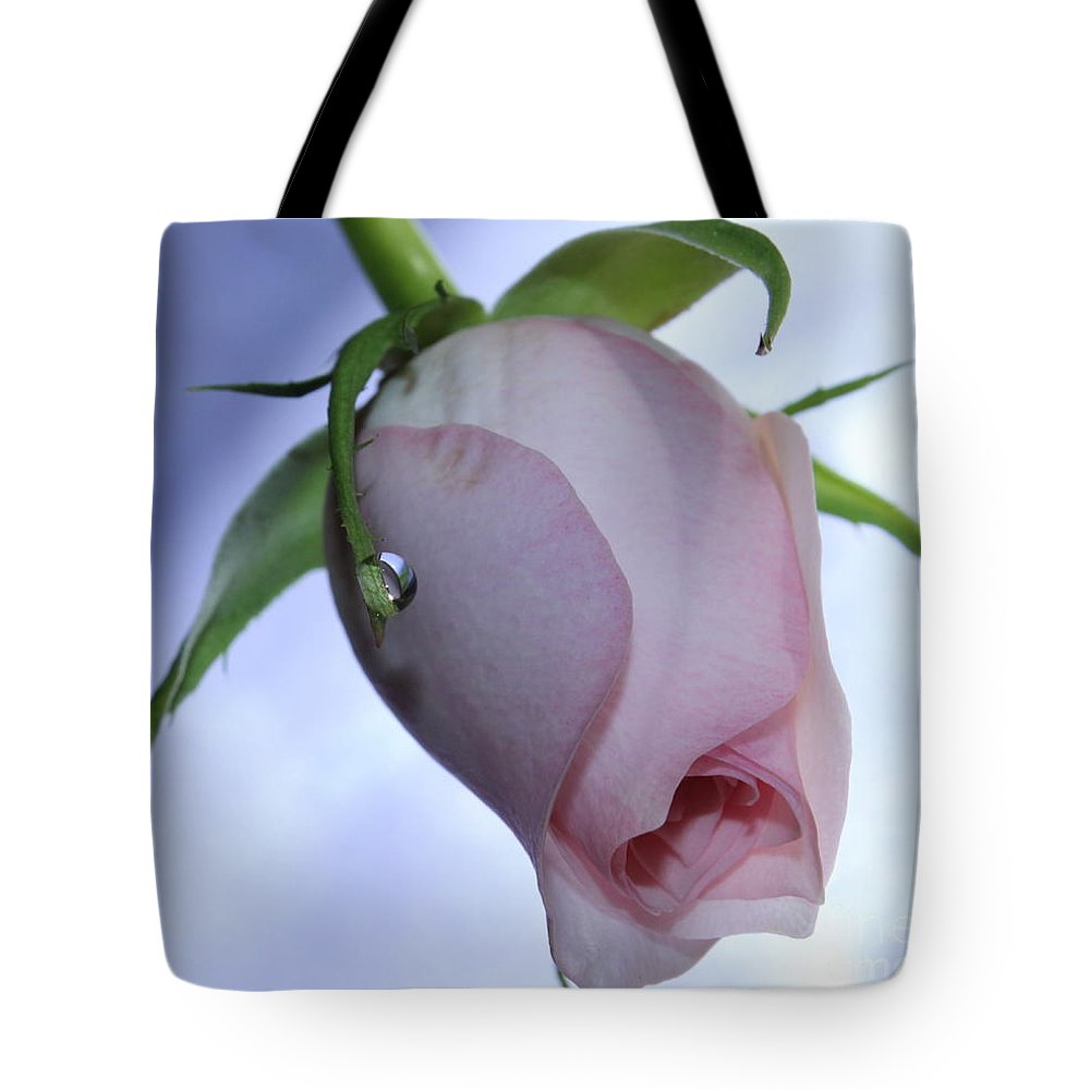 Rose Tote Bag featuring the photograph Wonder by Krissy Katsimbras