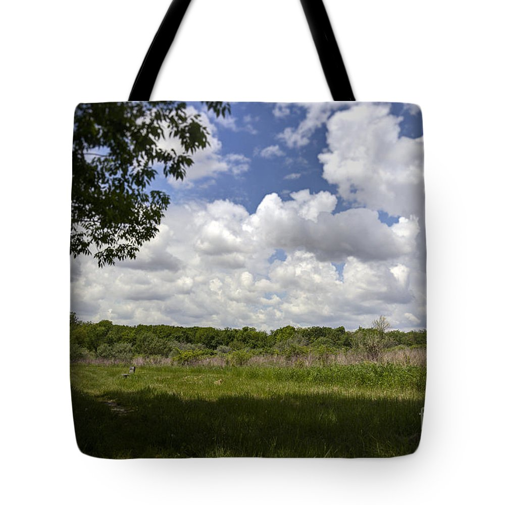 Alone Tote Bag featuring the photograph Wood Bench by Alan Look