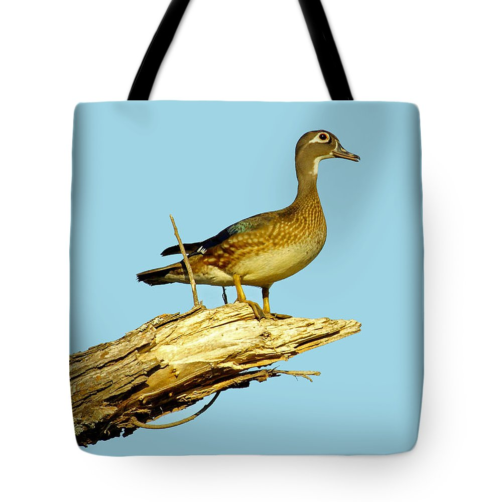 Nature Tote Bag featuring the photograph Wood Duck Hen In Tree by Robert Frederick