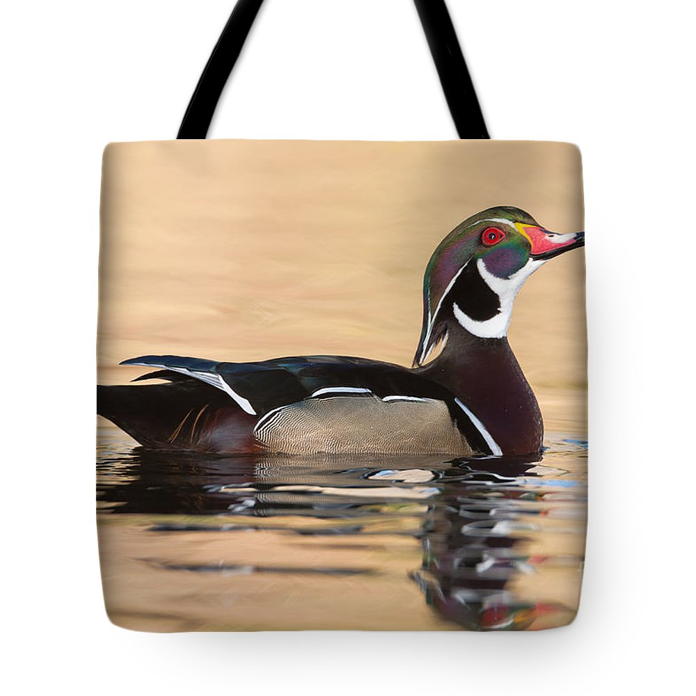 Clarence Holmes Tote Bag featuring the photograph Wood Duck I by Clarence Holmes