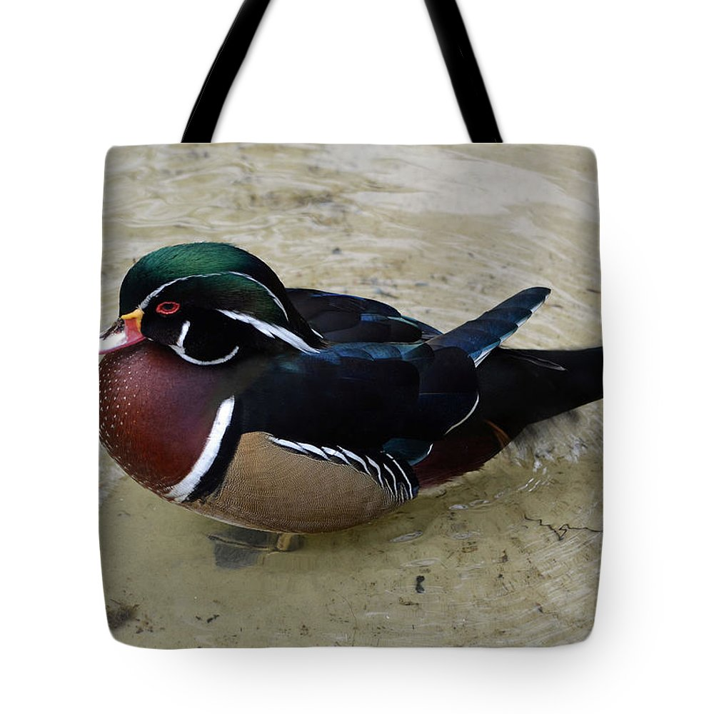 Wood Duck Tote Bag featuring the photograph Wood Duck In The Water by Richard Bryce and Family