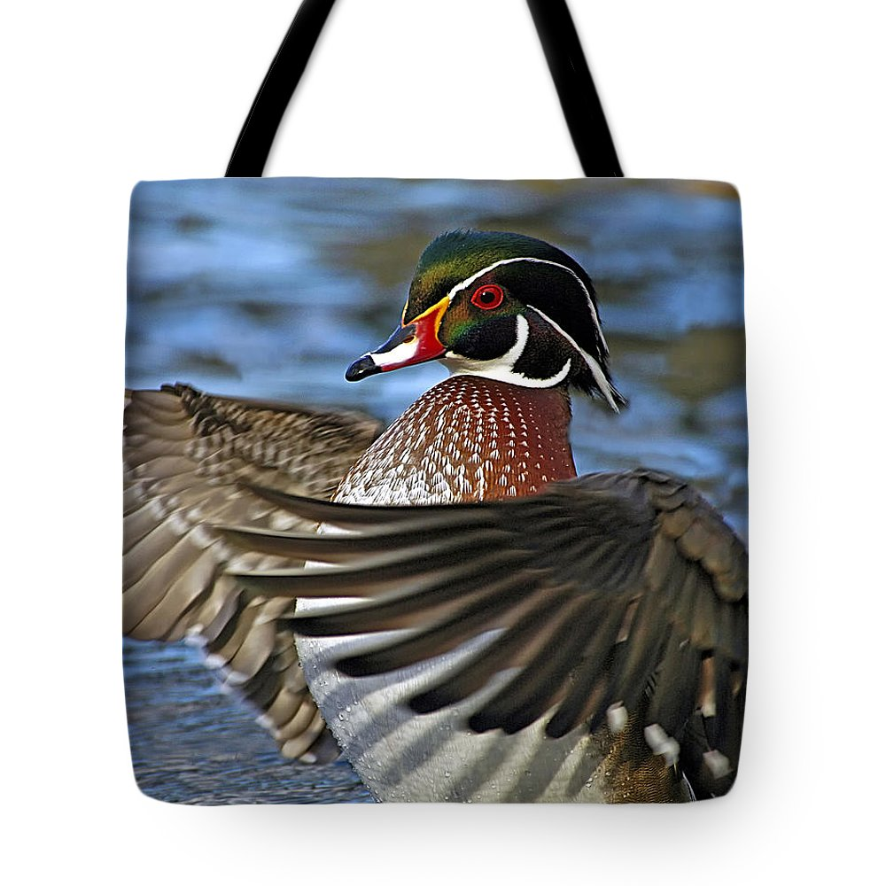 Wood Duck Tote Bag featuring the photograph Wood Duck Standing Ovation by Timothy Flanigan
