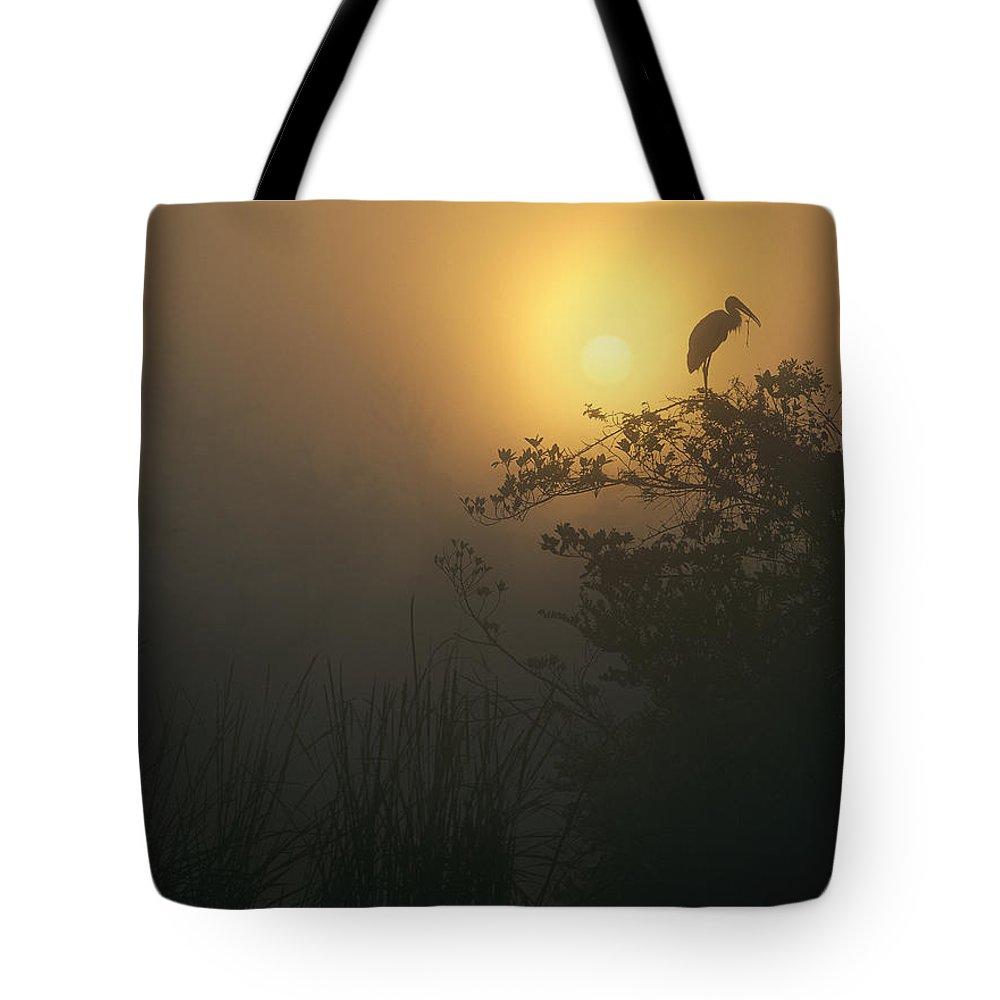 Back-lit Tote Bag featuring the photograph Wood Stork Evergladed National Park by Tim Fitzharris