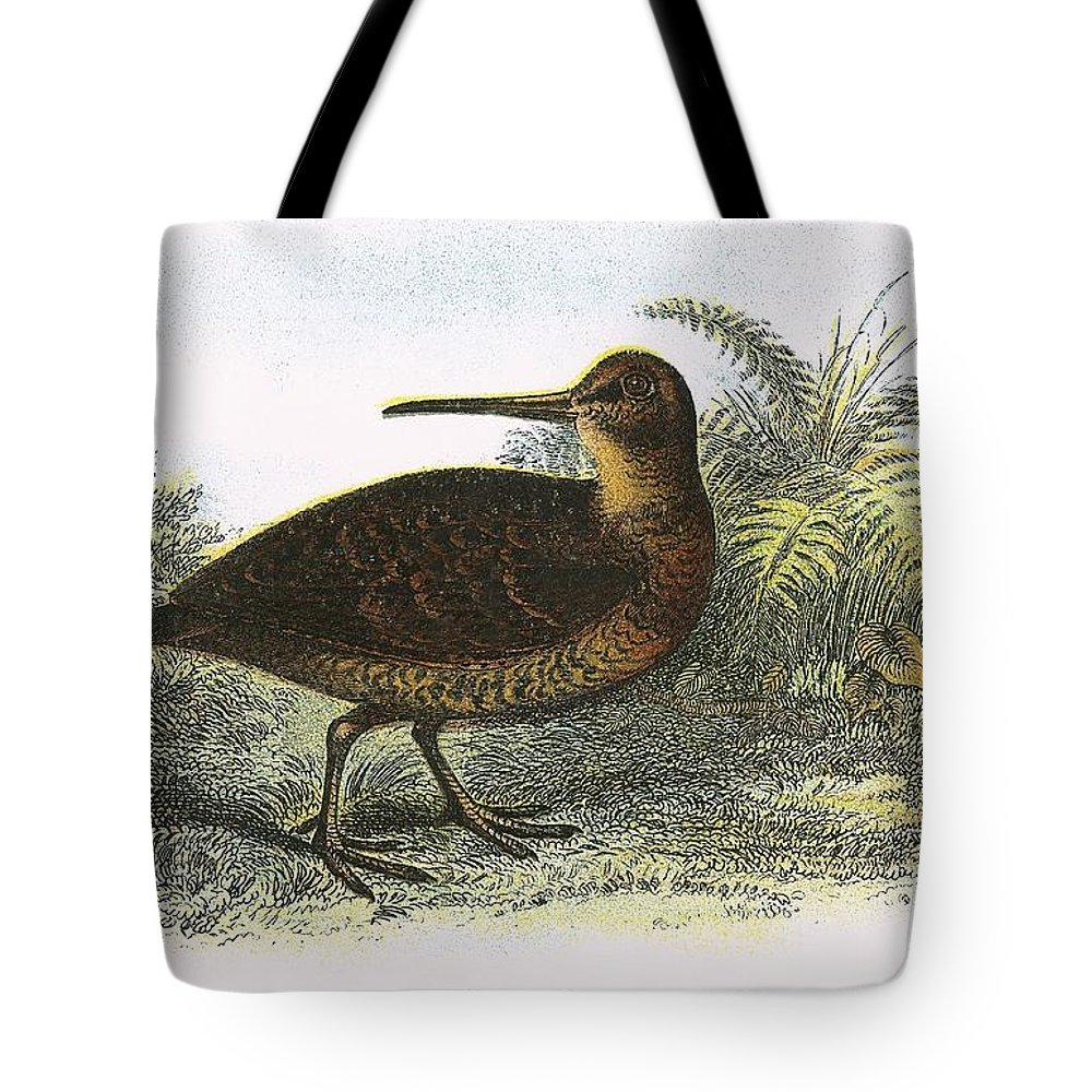 Woodcock Photographs Tote Bags