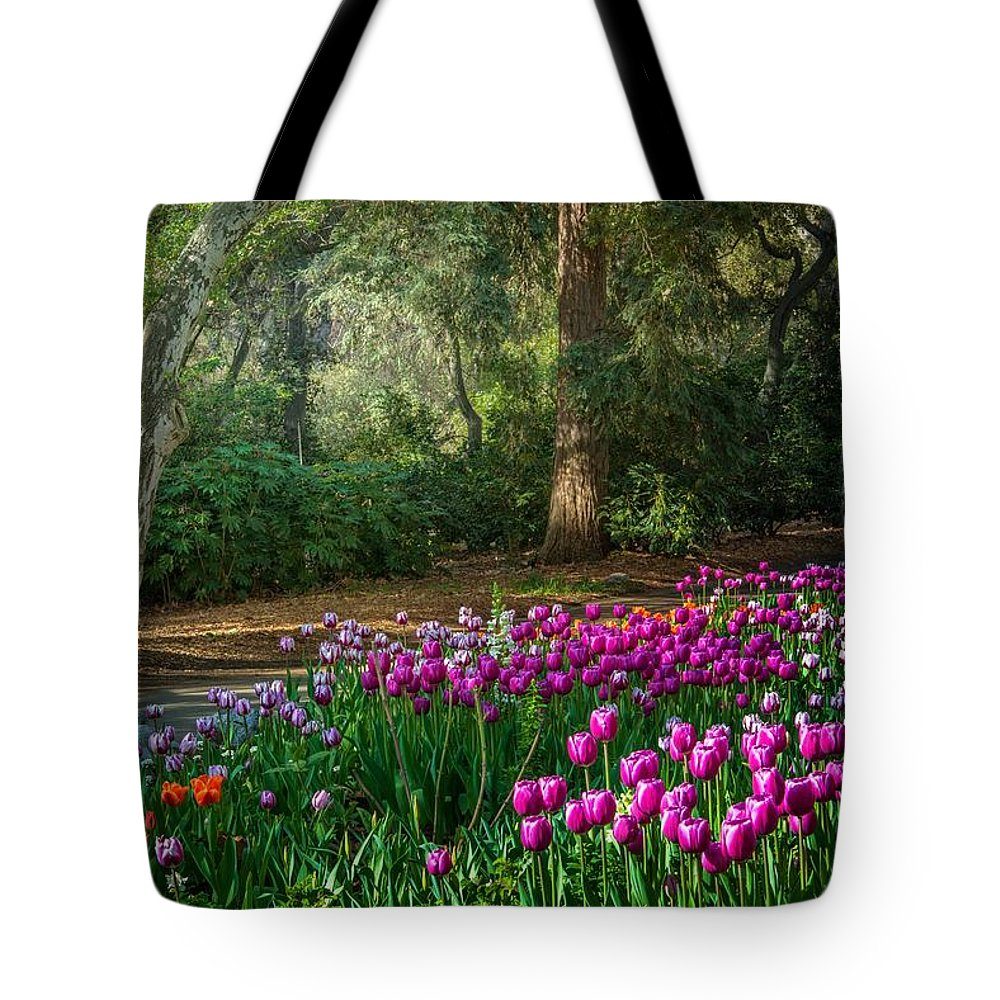 Tulip Tote Bag featuring the photograph Wooded Bliss by Lynn Bauer