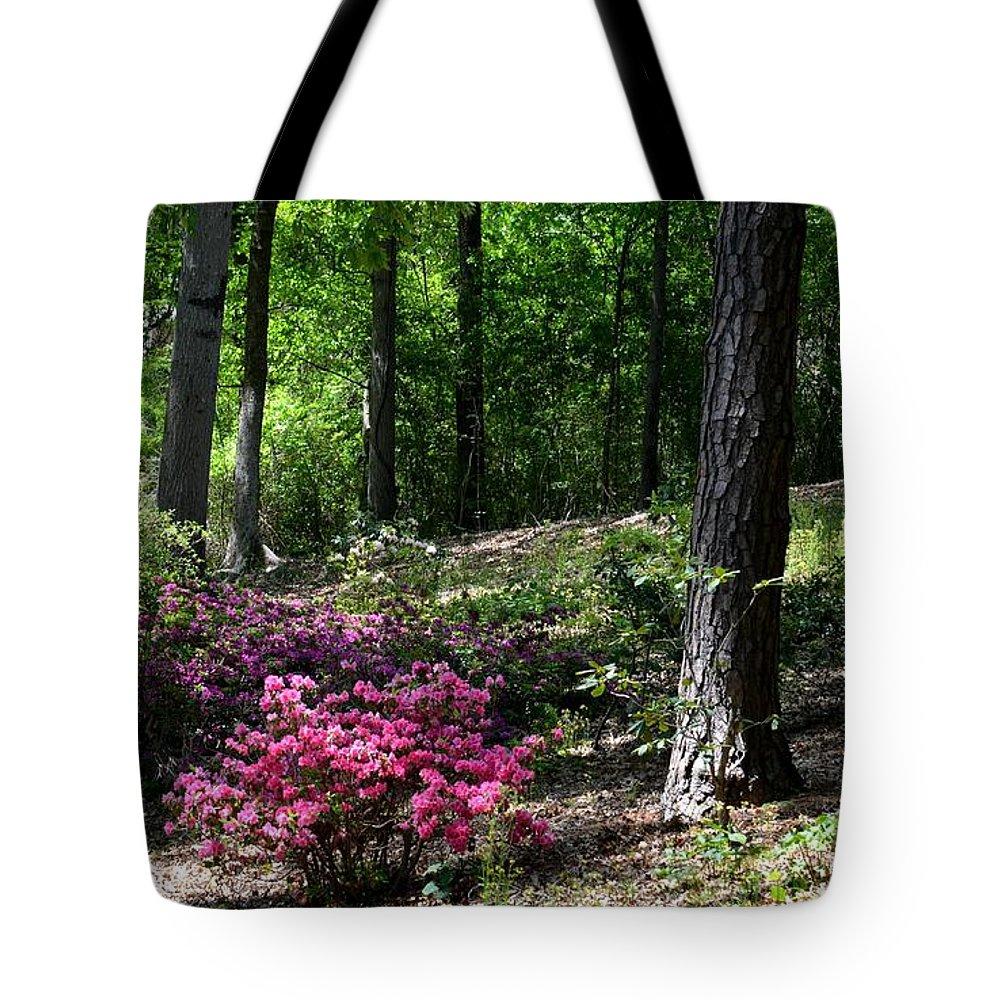 Woodland Azaleas Tote Bag featuring the photograph Woodland Azaleas by Maria Urso