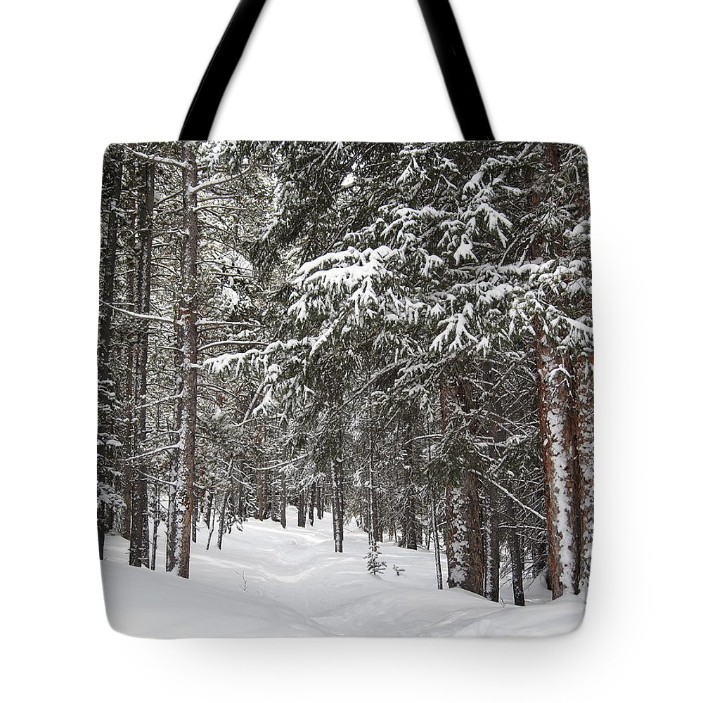 Forest Tote Bag featuring the photograph Woods In Winter by Eric Glaser